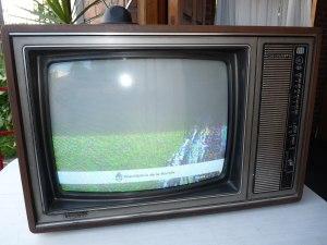 TV viejita